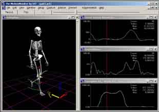 Polhemus 6 Degree-Of-Freedom (6DOF) motion capture