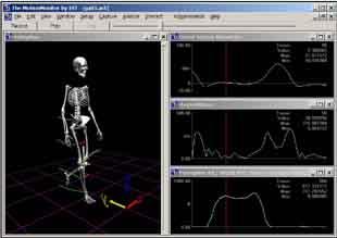 Polhemus 6 Degree-Of-Freedom (6DOF) motion capture