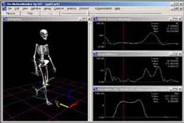 Case Study: Biomechanics Analysis—IST Integrates Polhemus LIBERTY
