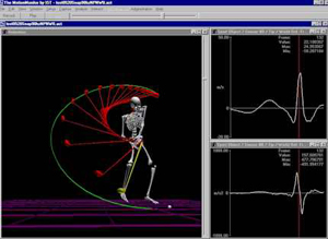 Polhemus LIBERTY motion tracking - advanced data acquisition and analysis