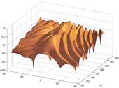 3-D swimbladder models