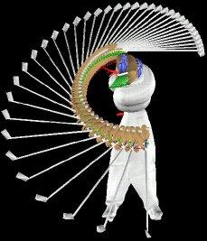 Polhemus virtual golf training and swing analysis system